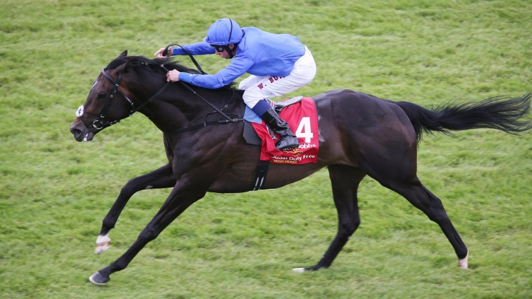 Jack Hobbs lands the Irish Derby by five lengths