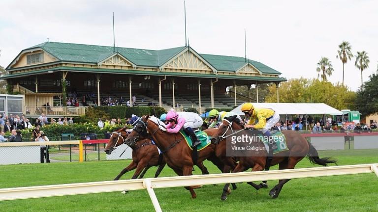 Action at Bendigo racecourse