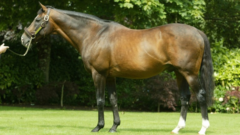 Sadler's Wells: set records that seemed invulnerable until his son Galileo came along