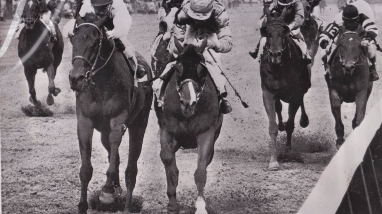 Northern Dancer, the little horse with blinkers and a skewed blaze, registers his breed-changing success in the 1964 Kentucky Derby