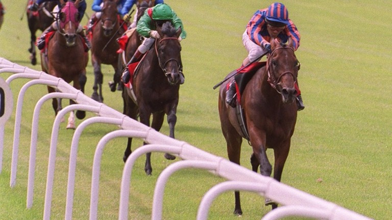 Montjeu wins the 1999 Irish Derby: he would go on to sire four Epsom winners