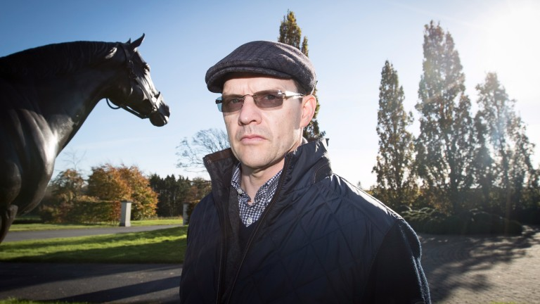 Aidan O'Brien: Clear Skies will be bidding to win her fourth straight race for the stable at Dundalk on Friday