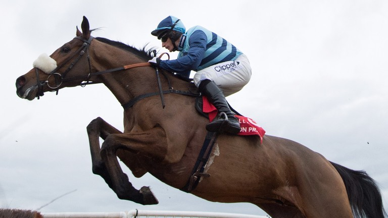 Last year's Foxhunter runner-up Wonderful Charm is fancied to go one better