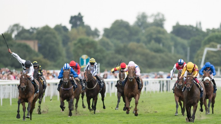 Marsha: (left) gets up on the line to deny Lady Aurelia in the Nunthorpe Stakes