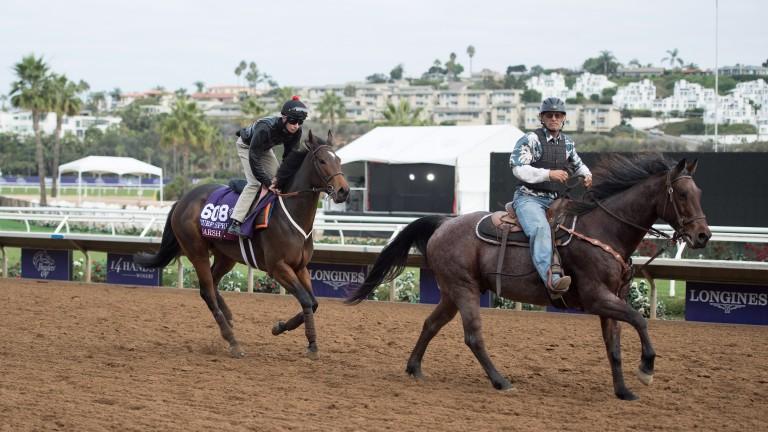 Marsha (Luke Morris) follows her pony at Del Mar