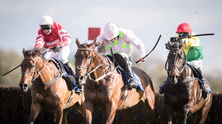 Djakadam (centre): chasing a third straight win in the John Durkan Chase