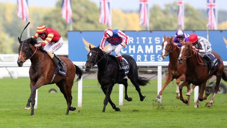 Qipco British Champions Fillies & Mares Stakes at Ascot, 2013: George Baker enjoys a breakthrough first Group 1 win on Seal Of Approval