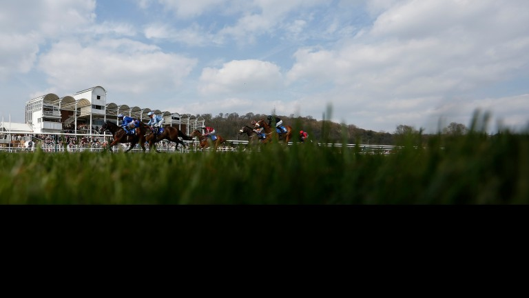 Nottingham racecourse: could stage three divisions of a two-year-old maiden next Wednesday