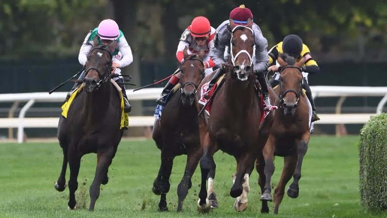 Ectot (maroon cap) leads the field home in the Joe Hirsch Turf Classic Stakes