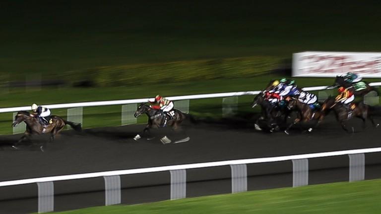 Kempton Park: a punter-friendly racecourse