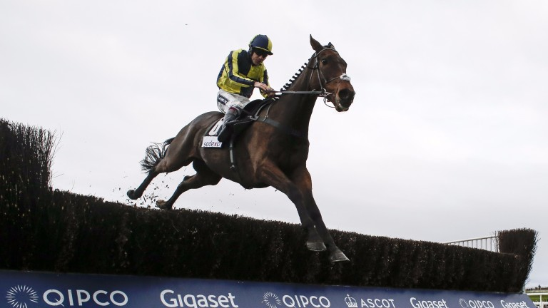 Go Conquer: landed the Sky Bet Chase at Doncaster on his last start