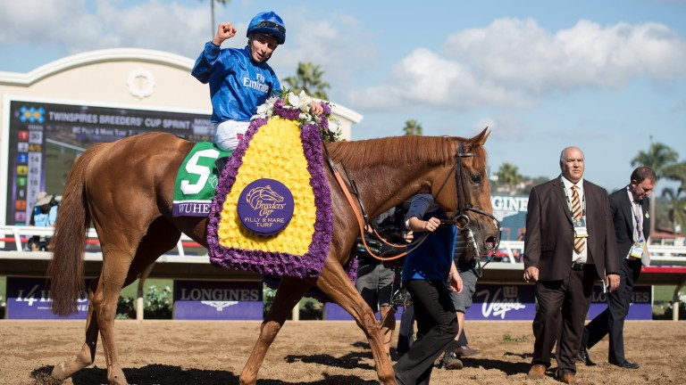 Wuheida and William Buick after their Breeders' Cup win