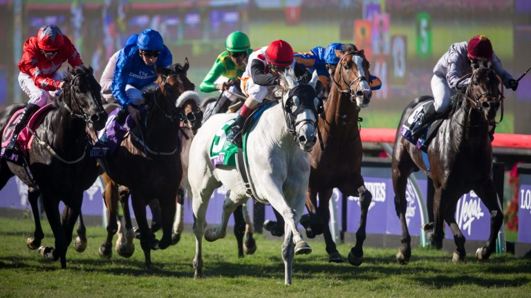 World Approval (grey) wins the Mile