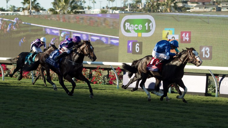 Talismanic wins the Breeders' Cup Turf