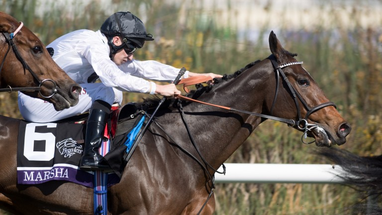 Marsha and Luke Morris in action at the Breeders' Cup