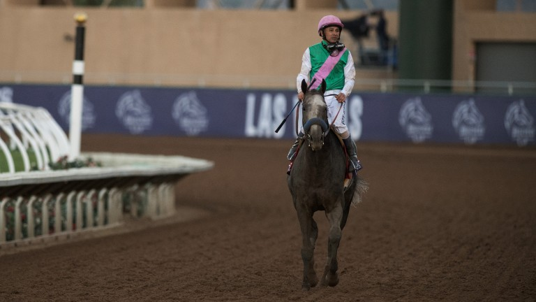 Arrogate: a well-beaten fifth in the Classic but top of the table according to Longines