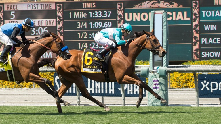 Lady Eli: a Grade 1 winner every year from two to five