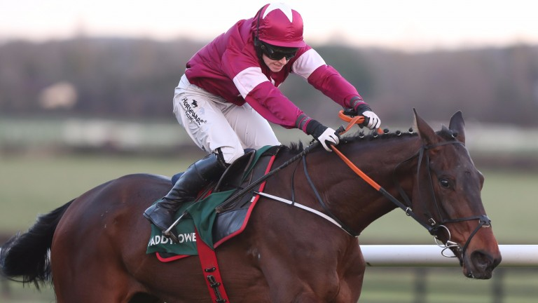 Monbeg Worldwide looks to retain his unbeaten form in the maiden hurdle at Fairyhouse on Tuesday