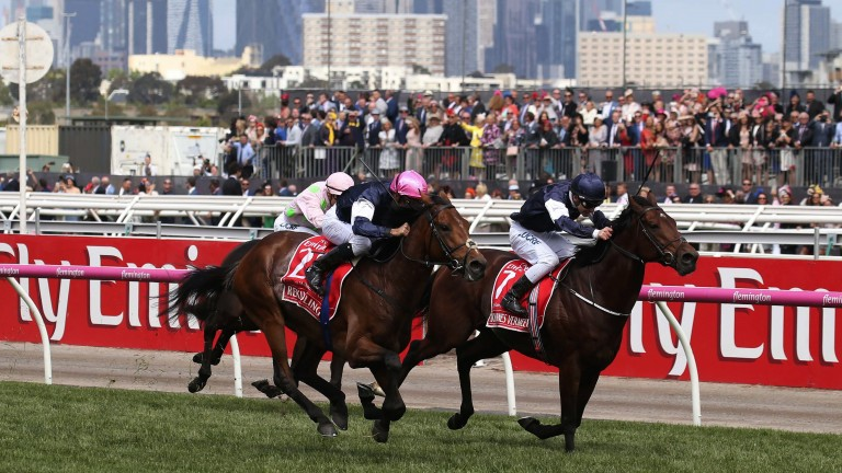 Neil Wilson: delivered last year's Melbourne Cup - won by Rekindling