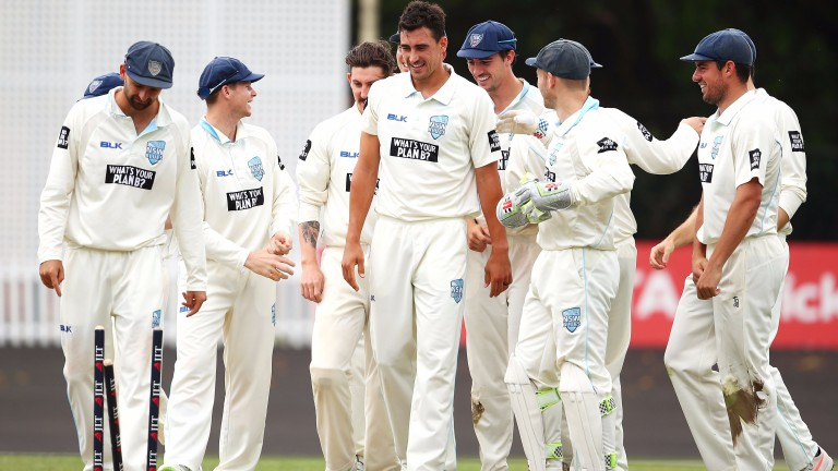 Mitchell Starc and New South Wales celebrate a Western Australia wicket
