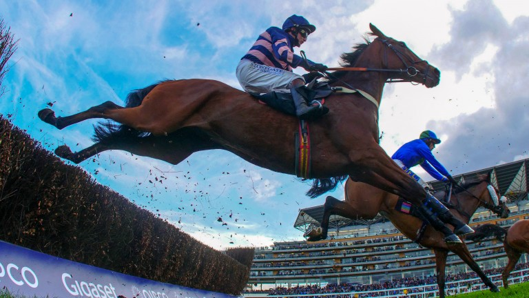 Ascot: track stages a six-race card plus a charity race