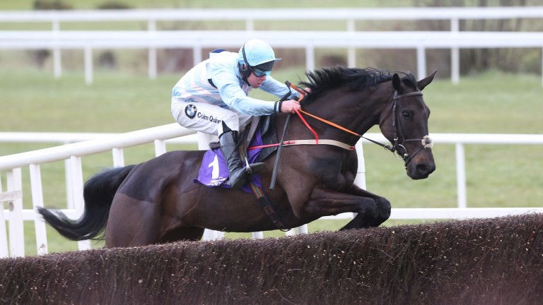 Alisier D'Irlande: bids to give Andrew Lynch a third victory in the race