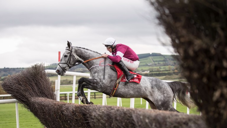 Petit Mouchoir: returns in the Grade 1 Frank Ward Solicitors Arkle Novice Chase