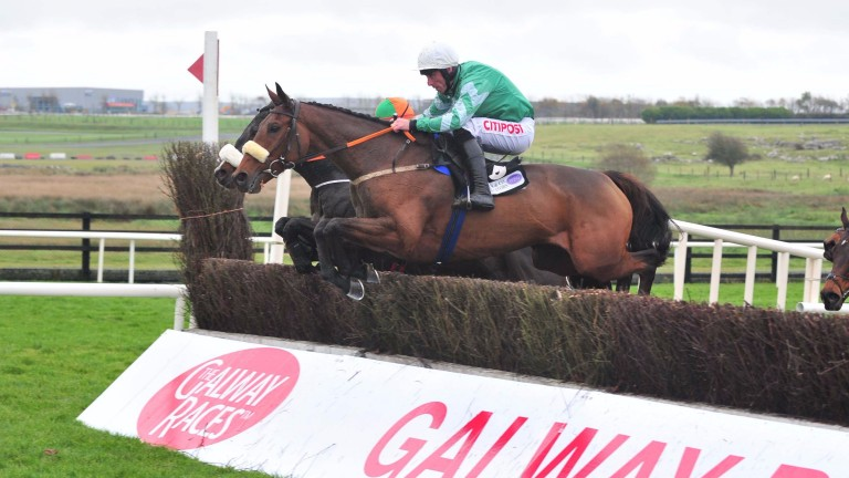 Presenting Percy gallops to Galway success at the end of last month, making a fine chasing debut