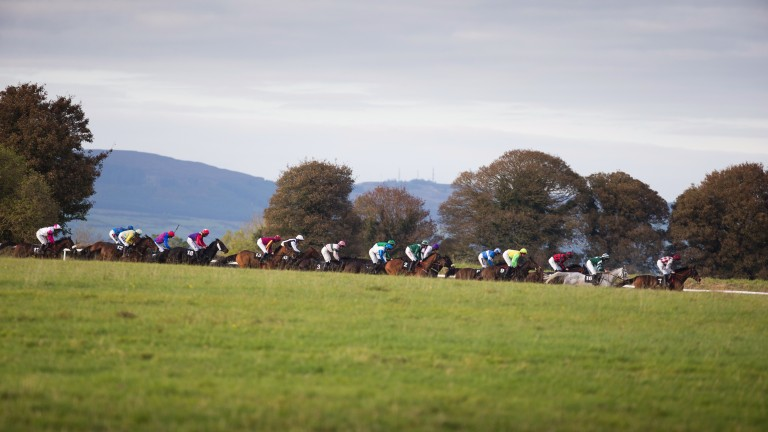 Thurles: takes centre stage on Sunday with Graded action
