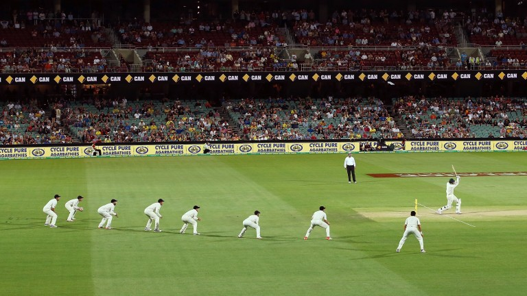 New Zealand's fielders hope for an edge during the day/night Test at Adelaide in 2015
