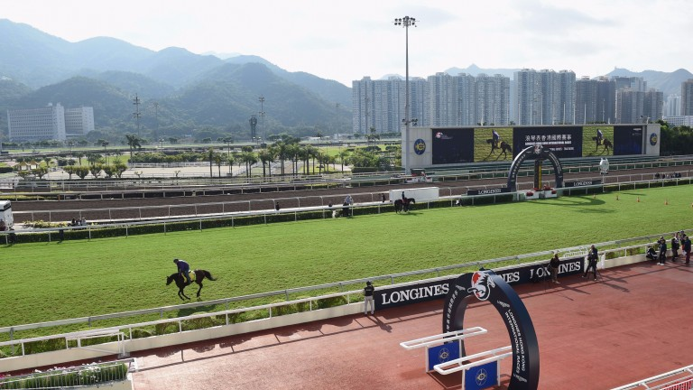 Hong Kong: racing takes place at Sha Tin on Sunday