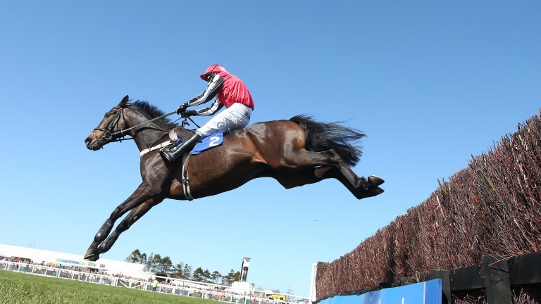 Duke Of Navan soars over a fence at Aintree
