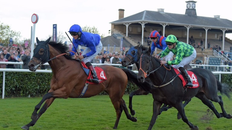 Who will follow last year's winner Prize Money in winning the Betfred November Handicap at Doncaster today?