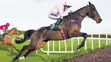 Douvan: old swagger appeared to be back at Cheltenham and he's entered up at the Punchestown festival