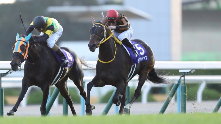 Mozu Katchan (red cap) fights out the finish to the Queen Elizabeth II Cup at Kyoto