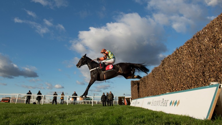 """Might Bite on the way to victory. Trainer Nicky Henderson says: """"He's got so much scope and presence about him and he's got character to go with it"""""""