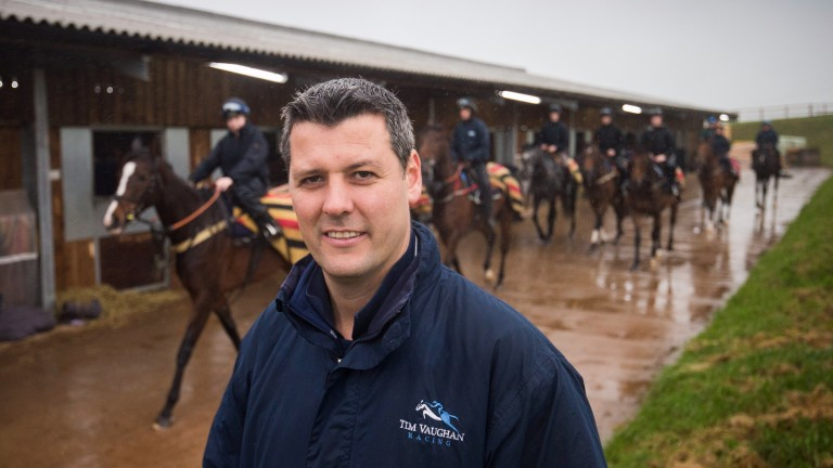 Tim Vaughan: trainer rates Nathans Pride as his best chance on Monday