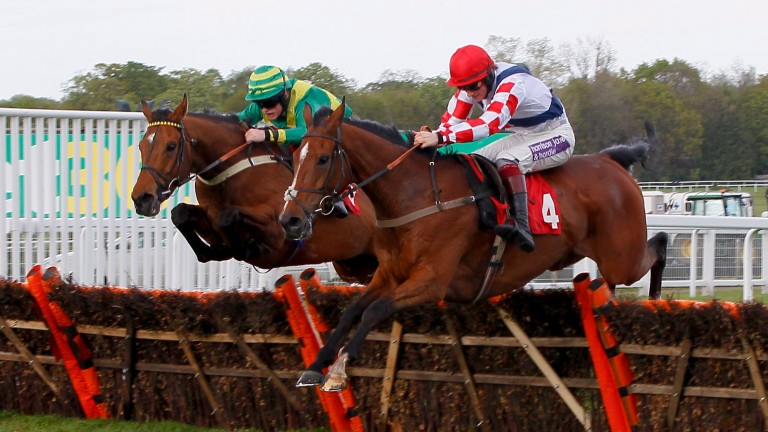 Clerk's Choice (left), a smart hurdler in Michael Banks's well-known colours