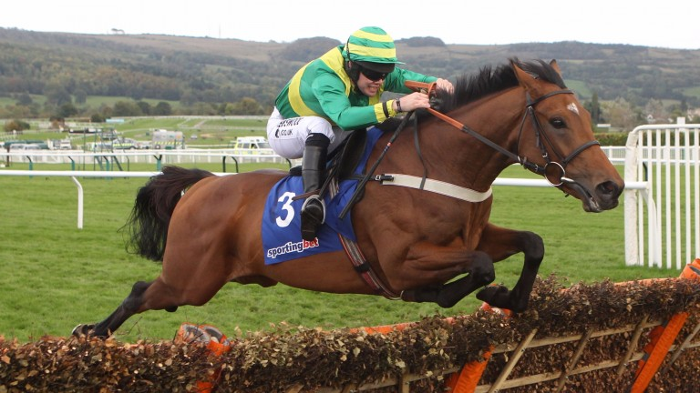 Clerk's Choice on his way to the Cheltenham win in October 2010 that sparked all the excitement