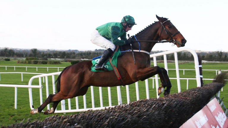 Footpad: impressed with his jumping on chasing debut at Navan