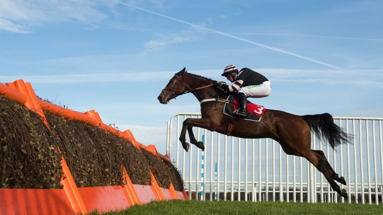 Mr Whipped puts his Cheltenham claims on the line at Warwick on Saturday
