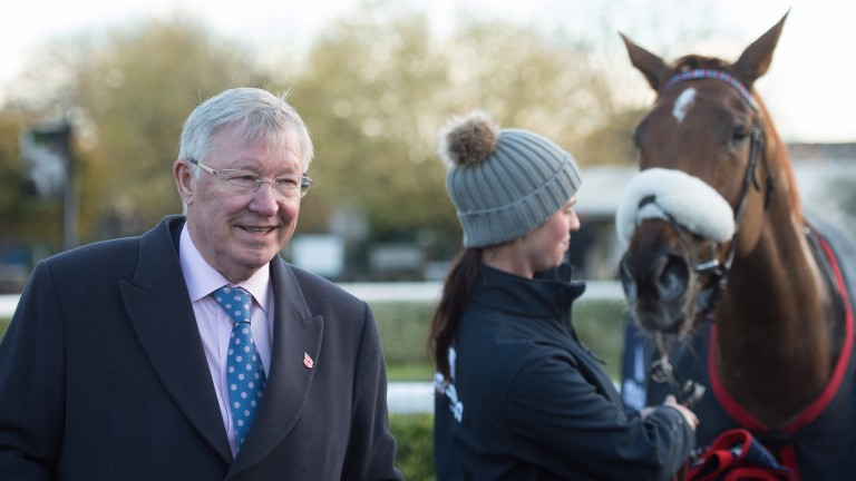 Sir Alex Ferguson: ownership interest in both codes