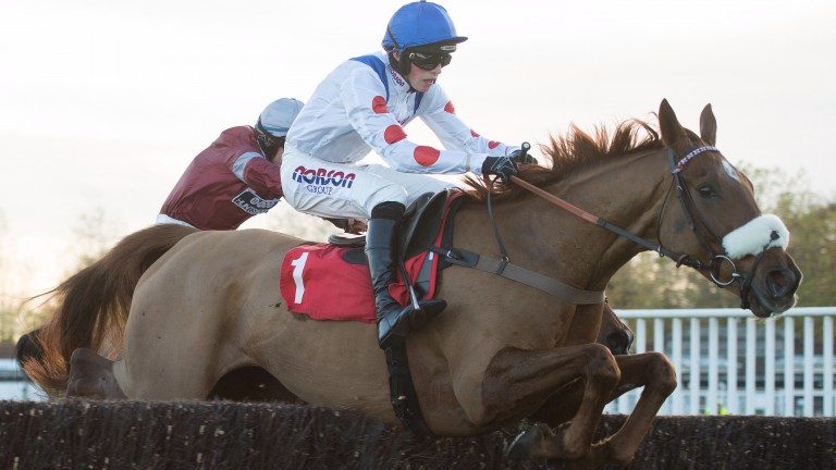 Give Me A Copper (Harry Cobden) jumps the last fence in the 3m novice chase