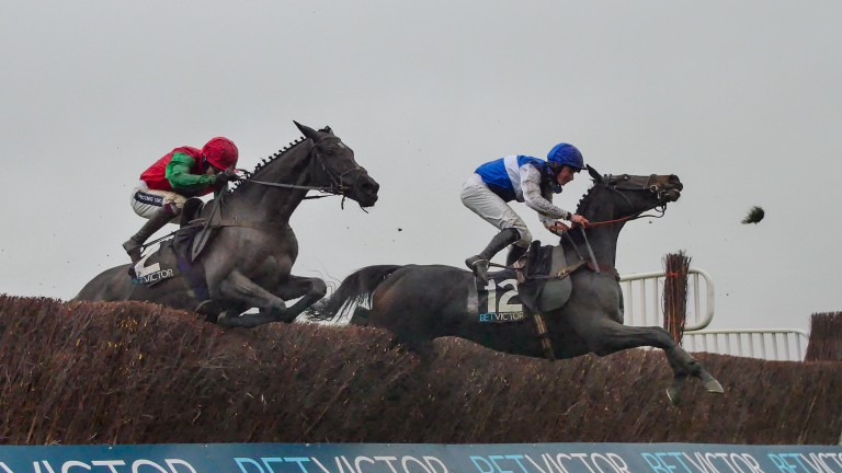 Aso jumps the last in front of winner Taquin Du Seuil in the 2016 BetVictor Gold Cup