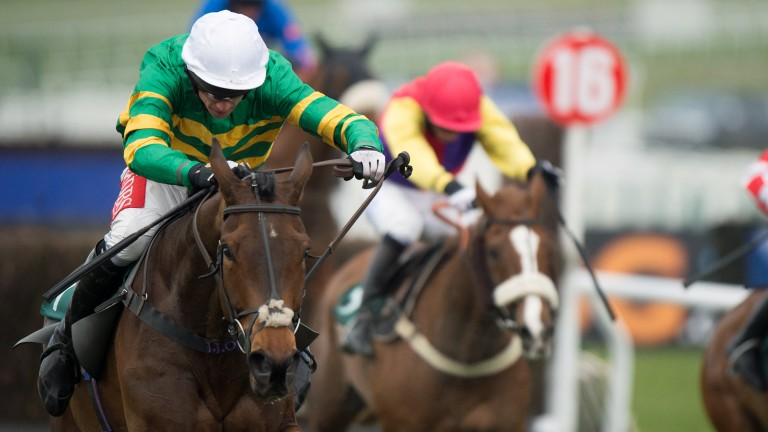 Minella Rocco (left) has not been in action for nearly a year