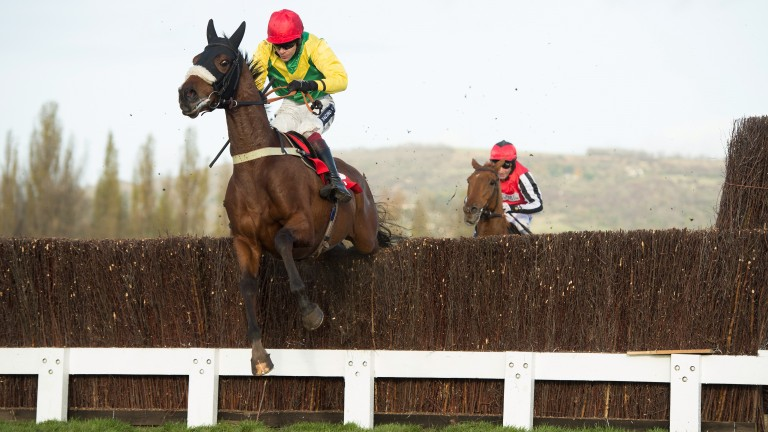 Fox Norton: hot favourite to repeat last year's Shloer Chase win at Cheltenham on Sunday