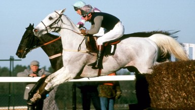 Desert Orchid is locked in an epic duel with Panto Prince for the 1989 Victor Chandler Chase