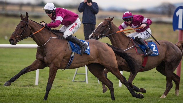 Mind's Eye bids for a second win over fences as he steps up to Grade 2 company at Punchestown