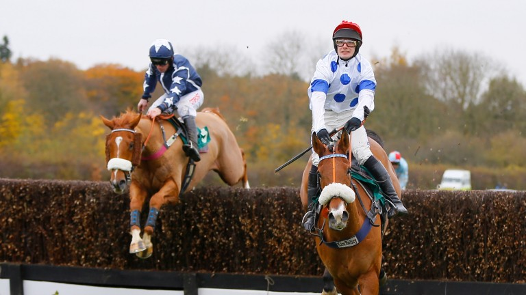 Somewhere To Be (left): Before becoming Zara Tindall's first winner at Lingfield on Tuesday