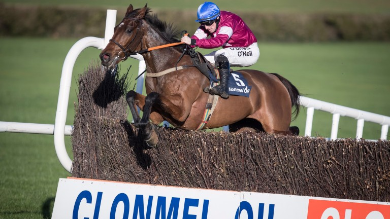 Alpha Des Obeaux and Sean Flanagan clear the last before winning the Grade 2 Clonmel Oil Chase
